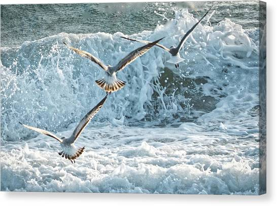 Hunting The Waves Canvas Print