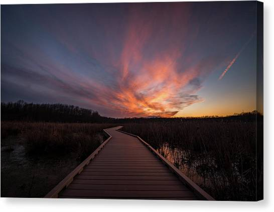 Huntley Meadows Sunset Canvas Print by Michael Donahue