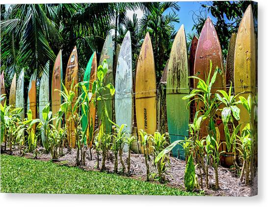 Surfboard Fence Canvas Print - Hurricane Barrier by Kelley King