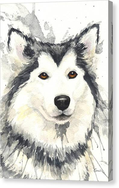 Huskies Canvas Print - Husky by Kathleen Wong