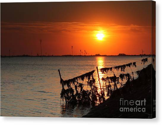 Husum Sunset Canvas Print
