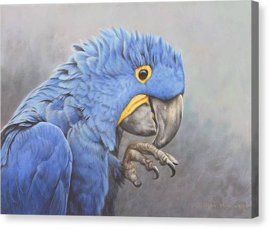 Canvas Print featuring the painting Hyacinth Macaw by Alan M Hunt