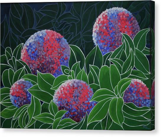 Hydrangea Grandiflora Canvas Print