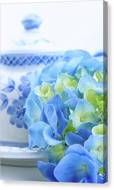 Hydrangea Memories Canvas Print