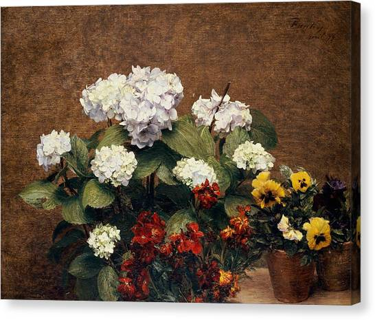 Pansies Canvas Print - Hydrangeas And Wallflowers And Two Pots Of Pansies by Henri Jean Fantin-Latour