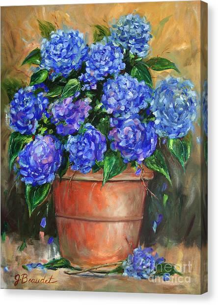 Hydrangeas In Pot Canvas Print
