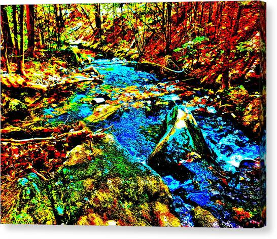 Hyper Childs Brook Z 5 Canvas Print