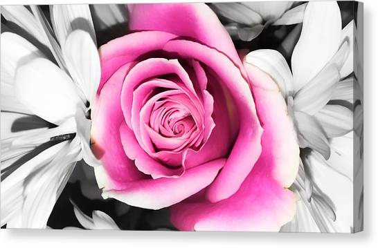 Hypnotic Pink 2 Canvas Print