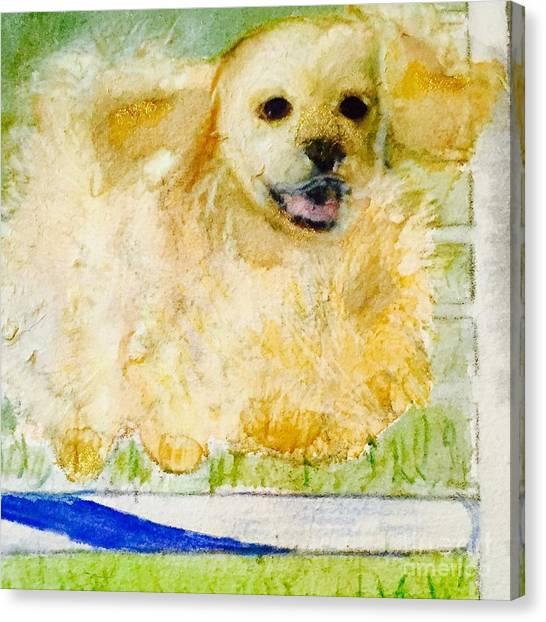 Cocker Spaniels Canvas Print - I Believe I Can Fly by Debra Lampert-Rudman