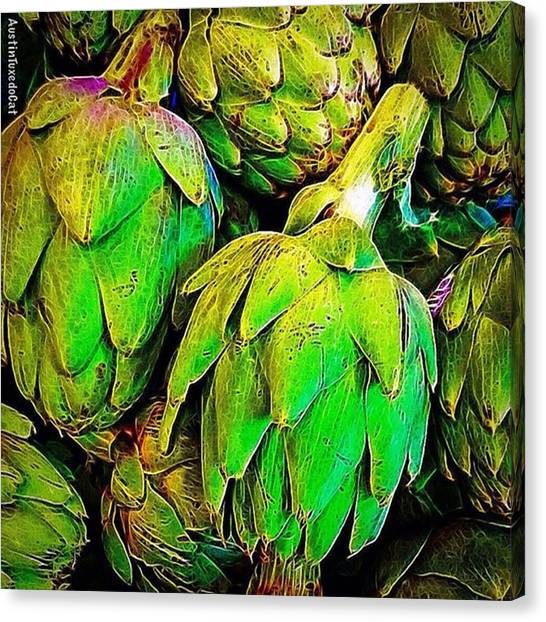 Artichoke Canvas Print - I Believe In #eating My #veggies And by Austin Tuxedo Cat