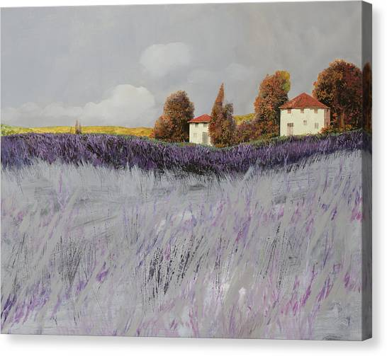 Cypress Canvas Print - I Campi Di Lavanda by Guido Borelli