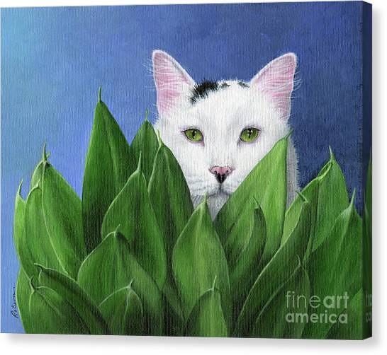I Can See You, But... Canvas Print by Peggy Dreher