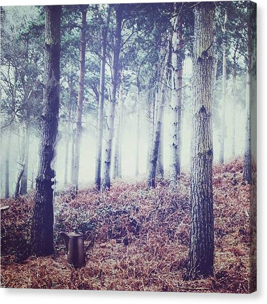Foggy Forests Canvas Print - I Don't Know What This Is. #nature by Kris K