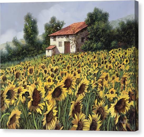 Sunflower Canvas Print - I Girasoli Nel Campo by Guido Borelli