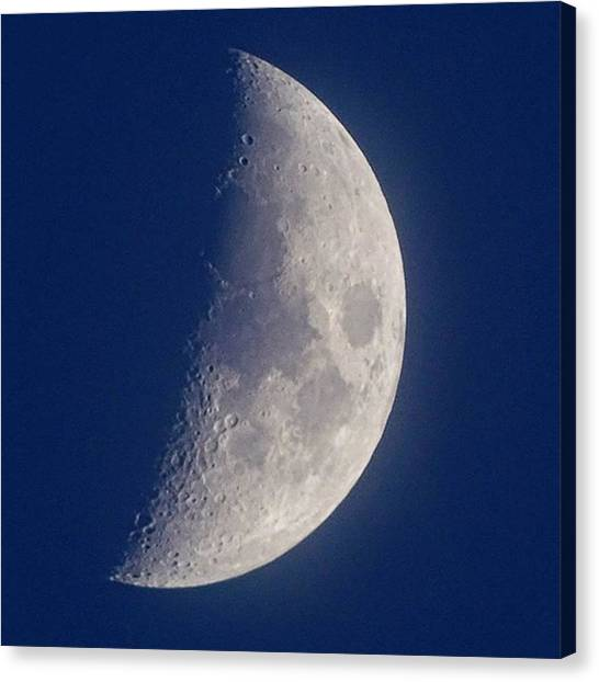Finches Canvas Print - I #love A #daytime #moon. #l4l #follow by Gary Finch