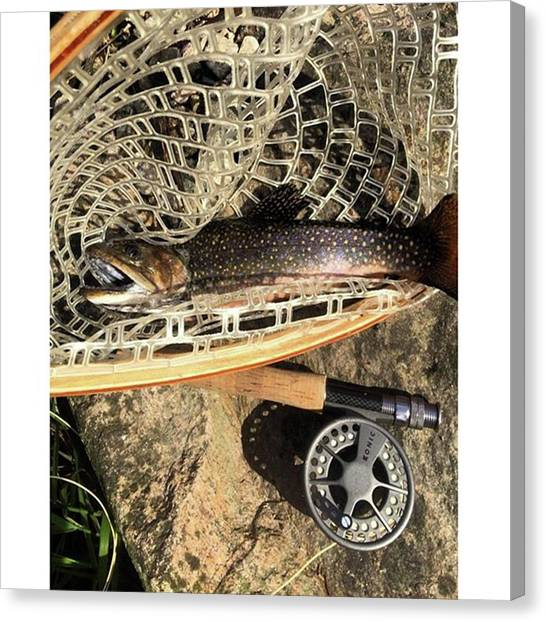 Trout Canvas Print - I Needed That #trout #flyfishing by John Repoza