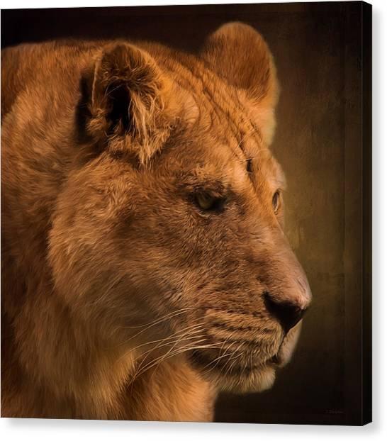 I Promise - Lion Art Canvas Print