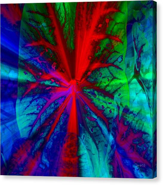 I Promised You Colors Canvas Print by Fania Simon