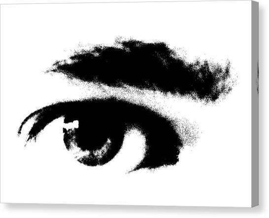 I Se You Canvas Print by Robert Litewka