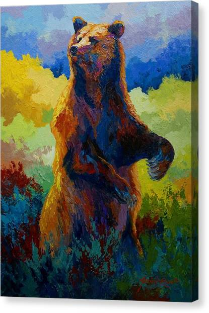 Denali Canvas Print - I Spy - Grizzly Bear by Marion Rose