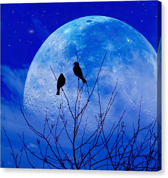 I Would Give You The Moon Canvas Print