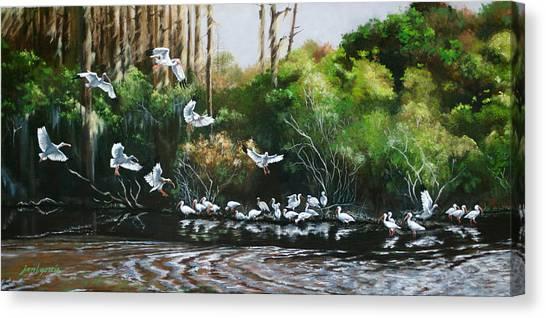 Ibis Landing Canvas Print