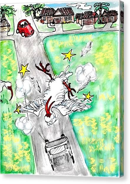 Ibis Sees Stars Canvas Print by Carol Allen Anfinsen
