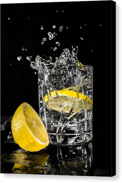 Ice And A Slice Canvas Print