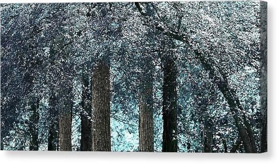 Ice Blue Arch Canvas Print