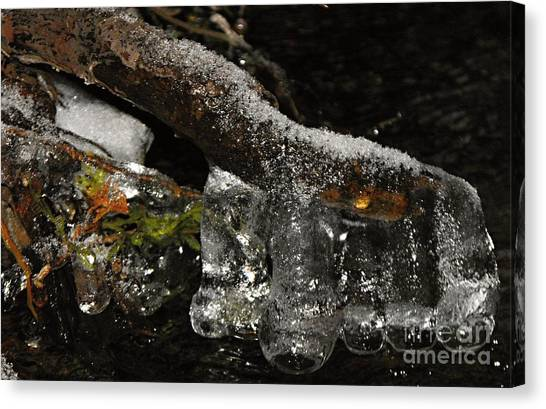 Ice Boots Canvas Print