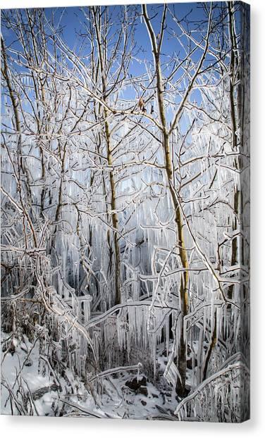 Ice Curtain Canvas Print