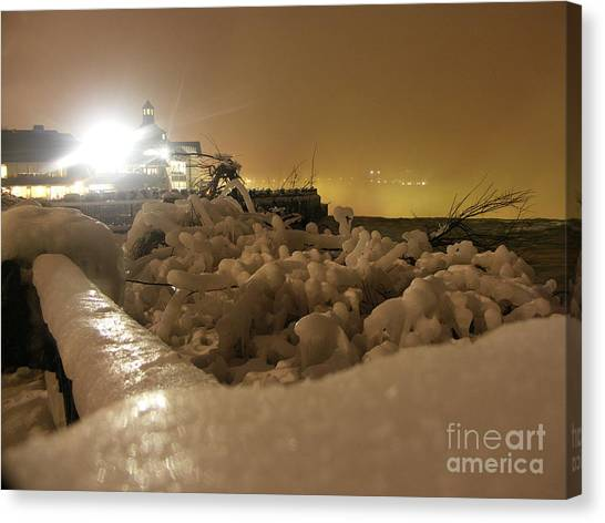Ice In Sepia Canvas Print by Deborah Selib-Haig DMacq
