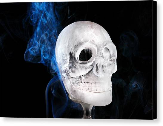 Ice Skulpture Canvas Print
