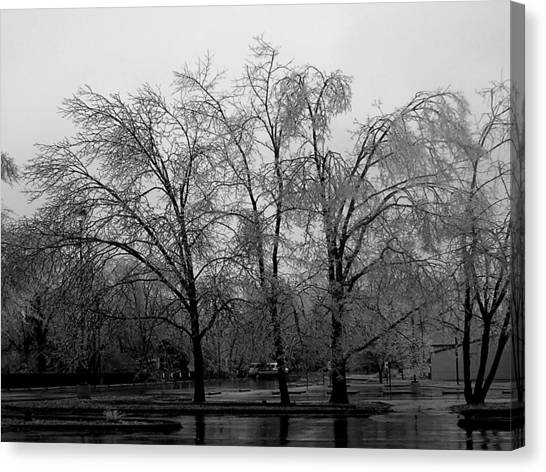 Canvas Print - Ice Trees by Audrey Venute