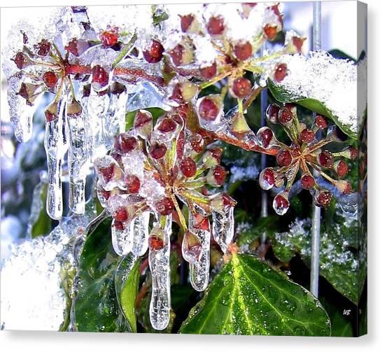 Iced Ivy Canvas Print