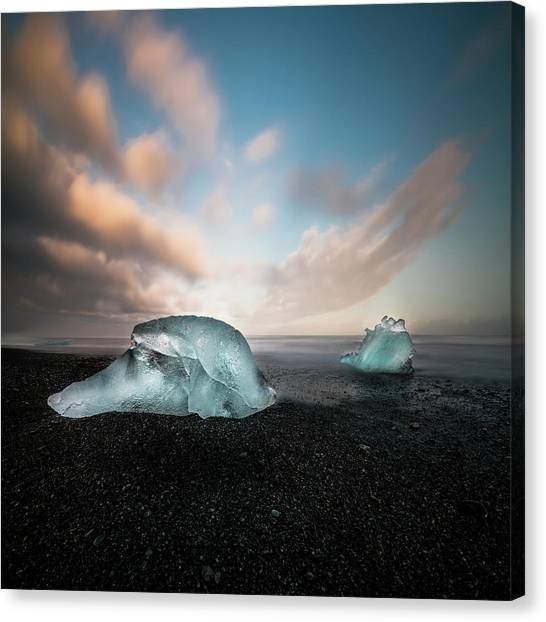 Reindeer Canvas Print - Iceland Glacial Ice by Larry Marshall