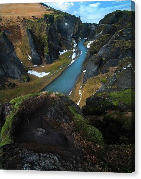 Reindeer Canvas Print - Iceland Gorge by Larry Marshall