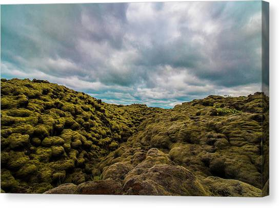 Iceland Moss And Clouds Canvas Print