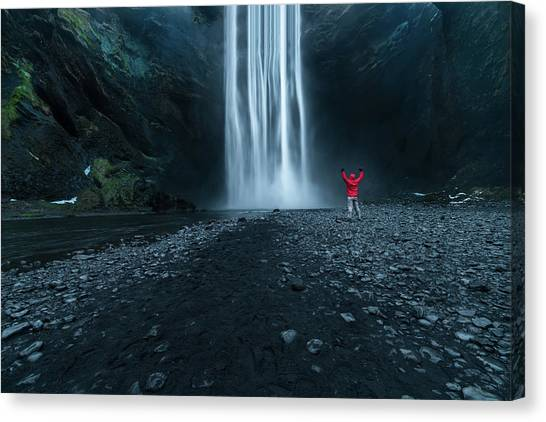 Reindeer Canvas Print - Iceland Waterfall by Larry Marshall