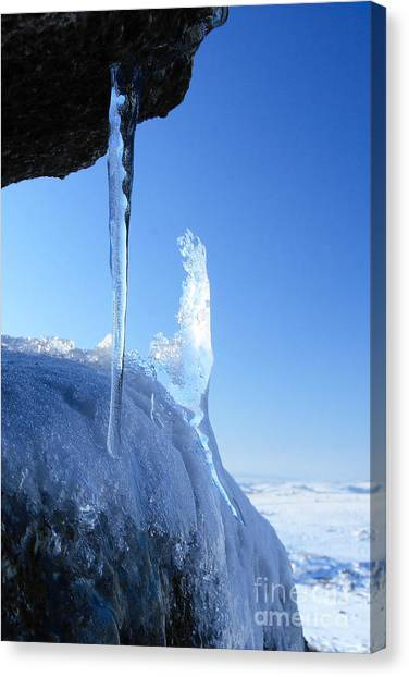 Icicle Canvas Print by Carl Whitfield