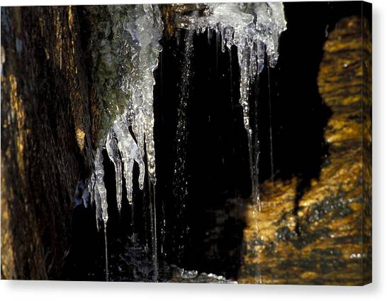Icicles 2 Canvas Print by Richard Steinberger