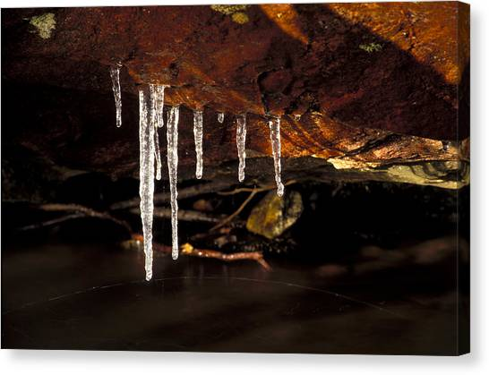 Icicles Canvas Print by Richard Steinberger