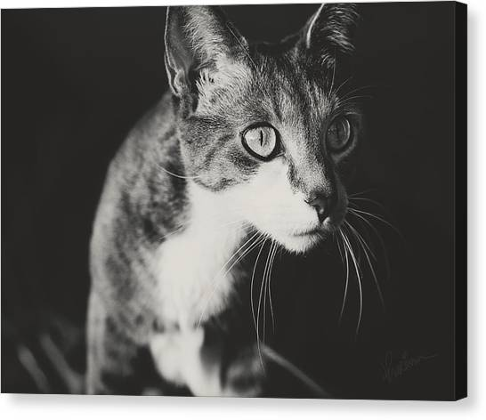 Ickis The Cat Canvas Print
