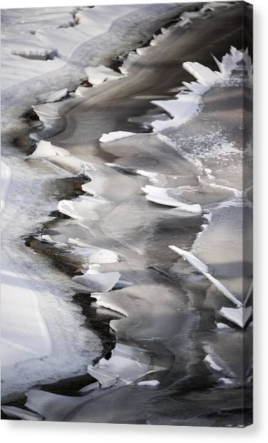Icy Shoreline Canvas Print