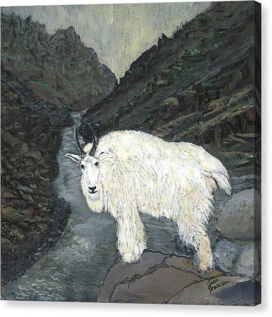Idaho Mountain Goat Canvas Print
