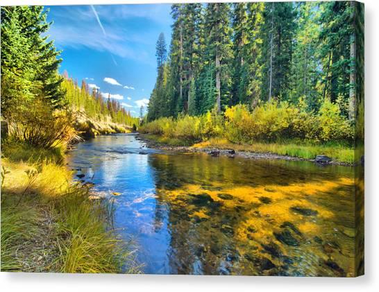 Idaho Stream 2 Canvas Print