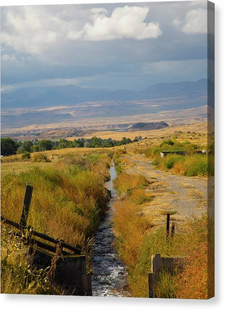 Idaho Stream Canvas Print