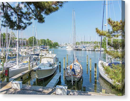 Canvas Print - Idle Boats Back Creek Annapolis by Charles Kraus