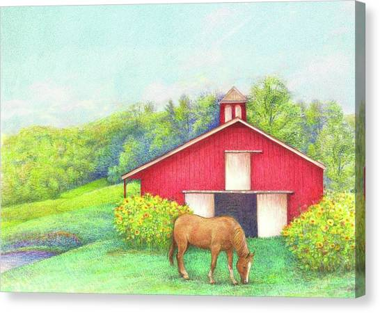 Idyllic Summer Landscape Barn With Horse Canvas Print