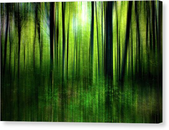 If A Tree Canvas Print